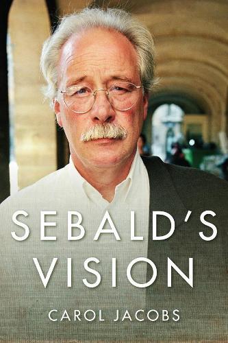 Sebald's Vision - Literature Now (Hardback)