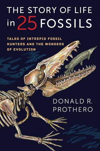 The Story of Life in 25 Fossils: Tales of Intrepid Fossil Hunters and the Wonders of Evolution (Hardback)
