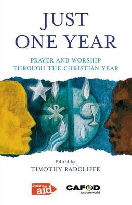 Just One Year (Paperback)