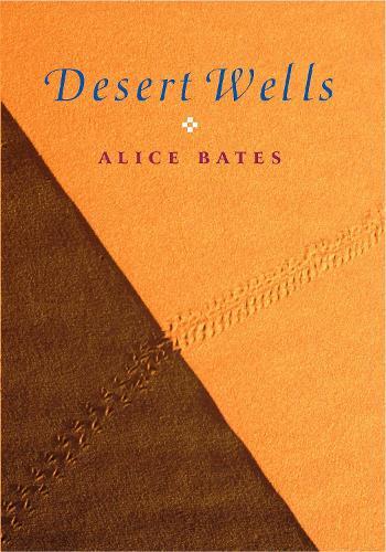 Desert Wells (Paperback)