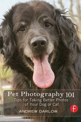 Pet Photography 101: Tips for taking better photos of your dog or cat (Paperback)