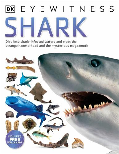 Shark - Eyewitness (Paperback)