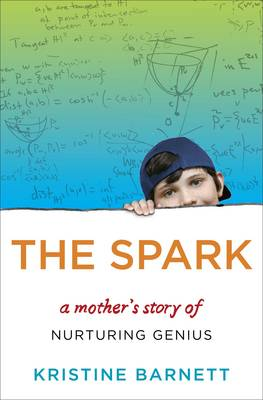 The Spark: A Mother's Story of Nurturing, Genius and Autism (Hardback)