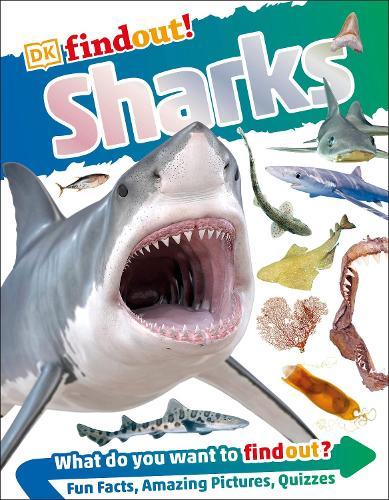 Sharks - Eyewonder (Paperback)
