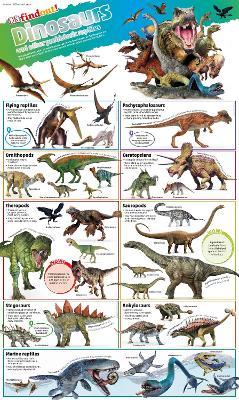 DKfindout! Dinosaurs Poster - DKfindout! (Wallchart)