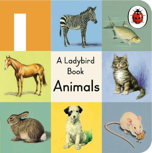 A Ladybird Buggy Book: Animals (Board book)