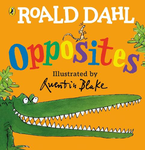 Roald Dahl's Opposites: (Lift-the-Flap) (Board book)