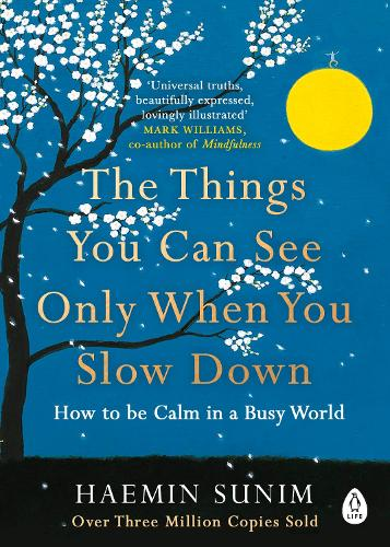 The Things You Can See Only When You Slow Down: How to be Calm in a Busy World (Paperback)