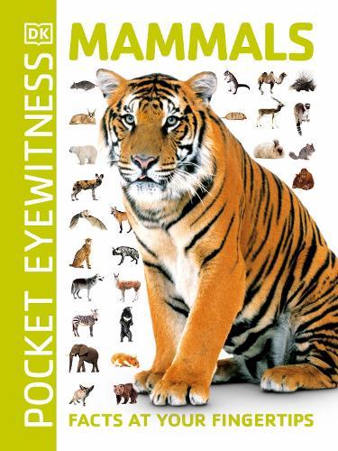 Pocket Eyewitness Mammals: Facts at Your Fingertips - Pocket Eyewitness (Paperback)