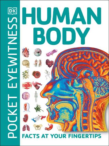 Pocket Eyewitness Human Body: Facts at Your Fingertips - Pocket Eyewitness (Paperback)
