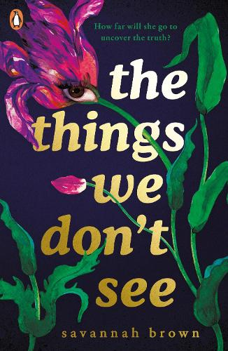 The Things We Don't See (Paperback)