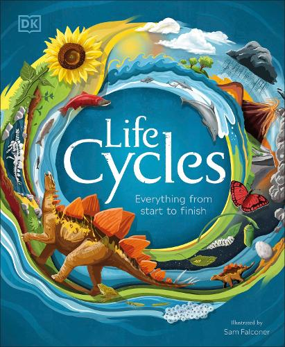 Life Cycles: Everything from Start to Finish (Hardback)