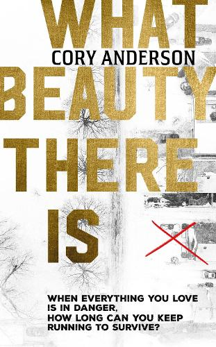 What Beauty There Is (Hardback)