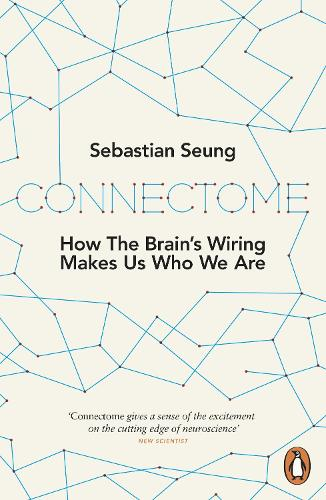 connectome - The Human Brain Coloring Book