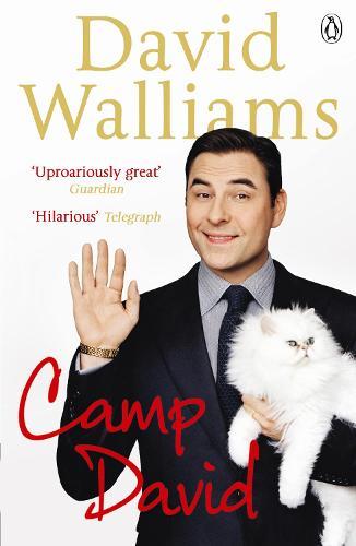 Camp David (Paperback)