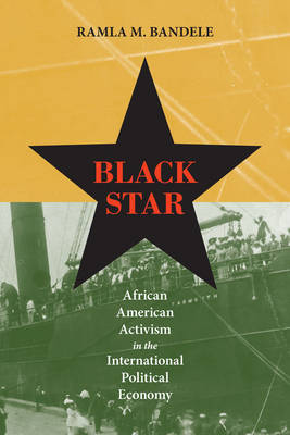 Black Star: African American Activism in the International Political Economy (Hardback)