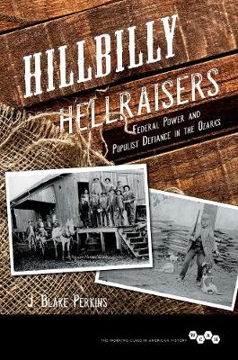 Hillbilly Hellraisers: Federal Power and Populist Defiance in the Ozarks - Working Class in American History (Hardback)