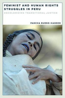 Feminist and Human Rights Struggles in Peru: Decolonizing Transitional Justice - Dissident Feminisms (Paperback)