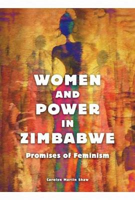 Women and Power in Zimbabwe: Promises of Feminism (Paperback)