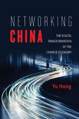 Networking China: The Digital Transformation of the Chinese Economy - Geopolitics of Information (Paperback)
