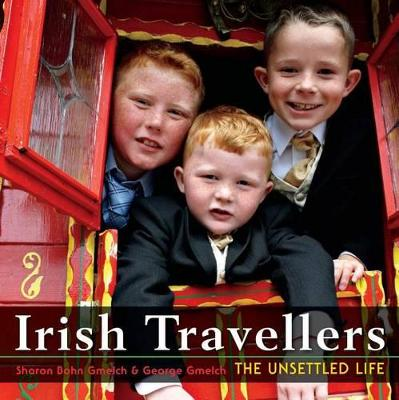 Irish Travellers: The Unsettled Life (Paperback)
