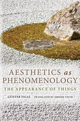Aesthetics as Phenomenology: The Appearance of Things - Studies in Continental Thought (Paperback)
