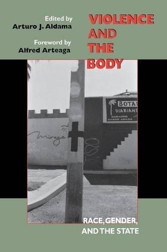 Violence and the Body: Race, Gender, and the State (Paperback)