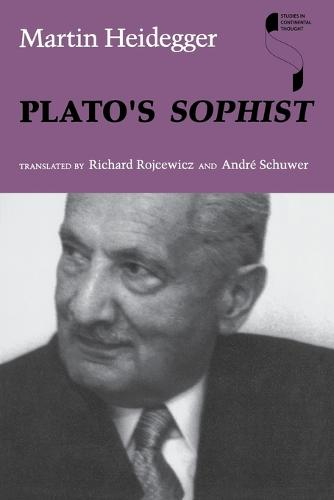 Plato's Sophist - Studies in Continental Thought (Paperback)