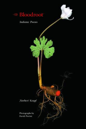 Bloodroot: Indiana Poems (Paperback)