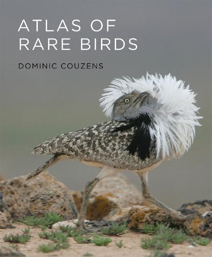 Atlas of Rare Birds (Hardback)