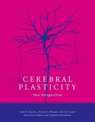 Cerebral Plasticity: New Perspectives - The MIT Press (Hardback)