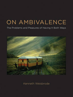 On Ambivalence: The Problems and Pleasures of Having it Both Ways - The MIT Press (Hardback)