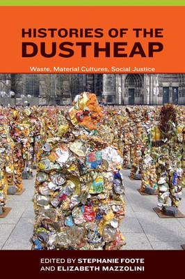 Histories of the Dustheap: Waste, Material Cultures, Social Justice - Urban and Industrial Environments (Hardback)