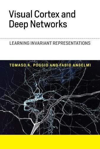 Visual Cortex and Deep Networks: Learning Invariant Representations - Computational Neuroscience Series (Hardback)