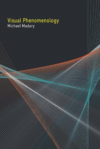 Visual Phenomenology - The MIT Press (Hardback)