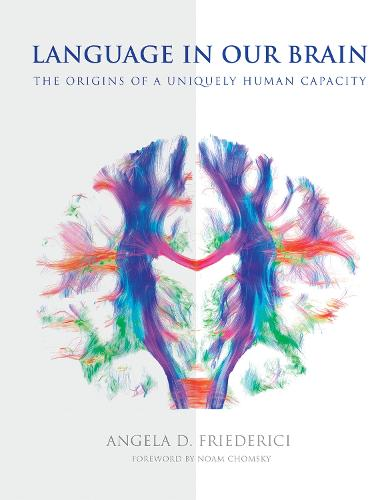 Language in Our Brain: The Origins of a Uniquely Human Capacity - The MIT Press (Hardback)