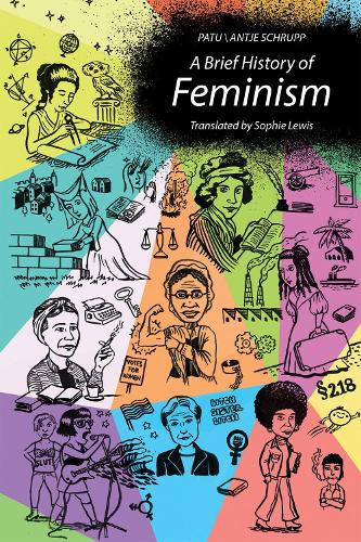 A Brief History of Feminism - The MIT Press (Hardback)