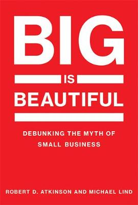 Big Is Beautiful: Debunking the Myth of Small Business - The MIT Press (Hardback)