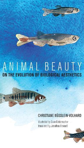 Animal Beauty: On the Evolution of Biological Aesthetics - The MIT Press (Hardback)
