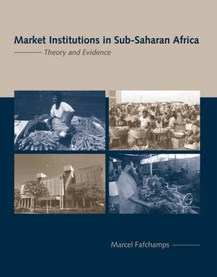 Market Institutions in Sub-Saharan Africa: Theory and Evidence - Comparative Institutional Analysis (Hardback)