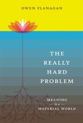 The Really Hard Problem: Meaning in a Material World - MIT Press (Hardback)