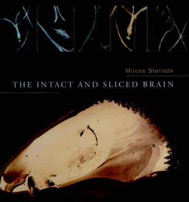 The Intact and Sliced Brain - A Bradford Book (Hardback)