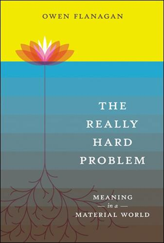 The Really Hard Problem: Meaning in a Material World - A Bradford Book (Paperback)