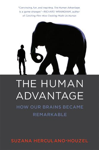 The Human Advantage: How Our Brains Became Remarkable - The MIT Press (Paperback)
