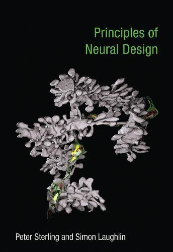 Principles of Neural Design - The MIT Press (Paperback)