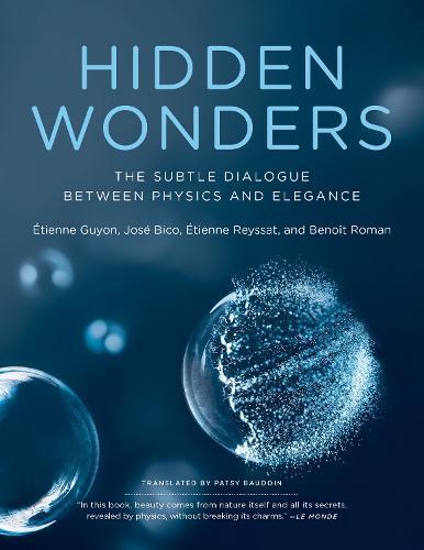 Hidden Wonders: The Subtle Dialogue Between Physics and Elegance (Paperback)