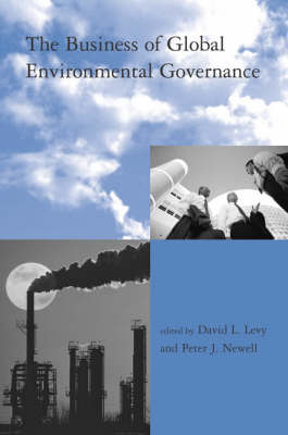 The Business of Global Environmental Governance - Global Environmental Accord: Strategies for Sustainability and Institutional Innovation (Paperback)