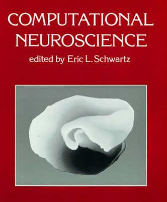 Computational Neuroscience - System Development Foundation Benchmark Series (Paperback)