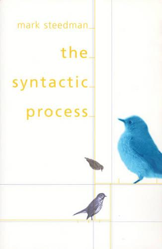 The Syntactic Process - Language, Speech, and Communication (Paperback)