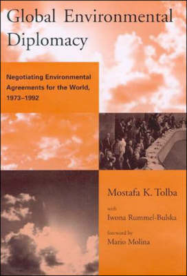 Global Environmental Diplomacy: Negotiating Environmental Agreements for the World, 1973-1992 - Global Environmental Accord: Strategies for Sustainability and Institutional Innovation (Paperback)